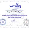 Dạy wax lông